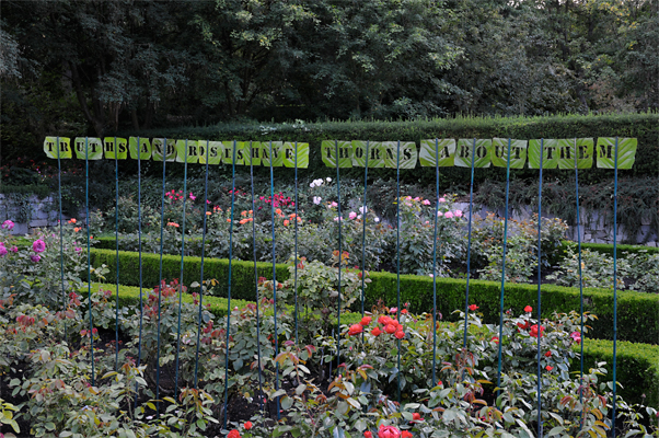 Truths And Roses Have Thorns About Them. Quote by Henry David Thoreau appropriate for the formal Rose garden.