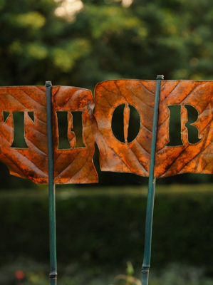 THOR. Leaves turn brown; the message remains.