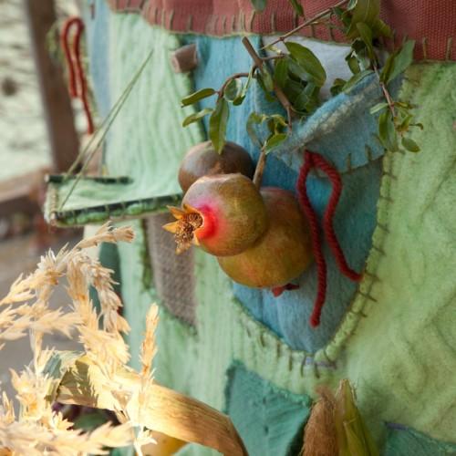 Pomegranate in the Nomadik Harvest Dress