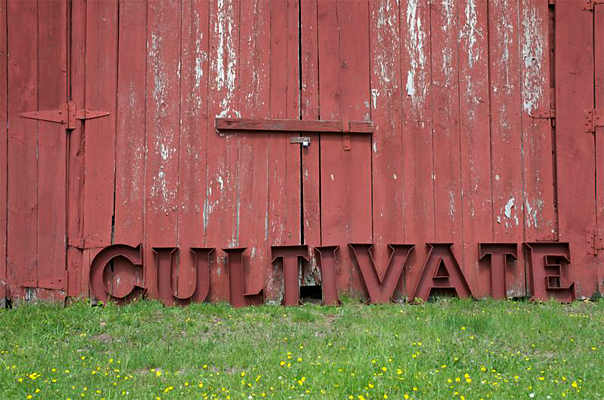 Cultivate Forms - The wooden forms created for the project, seen here before they were planted with grass, were painted Barn Red.