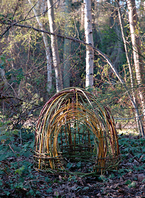 Small Shelter - First attempt at working with the Blackberry. Incorporated Willow branches and found good gloves.