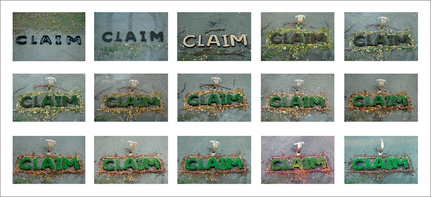Claim Sequence - Selection of documentation of growth as the word claimed the land.