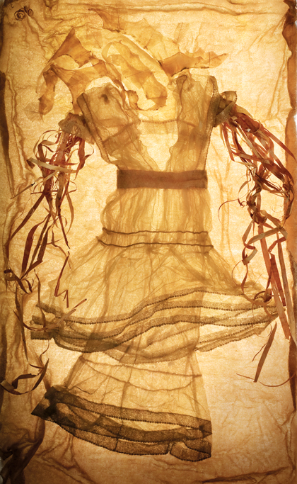 Laura - Photograph of skeletonized Laurel leaves, Birch bark, Deer skin, fabric, ice.