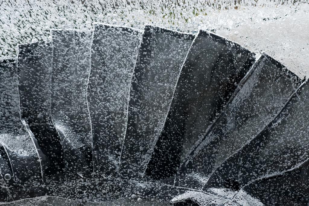 Black Minotaur, Detail