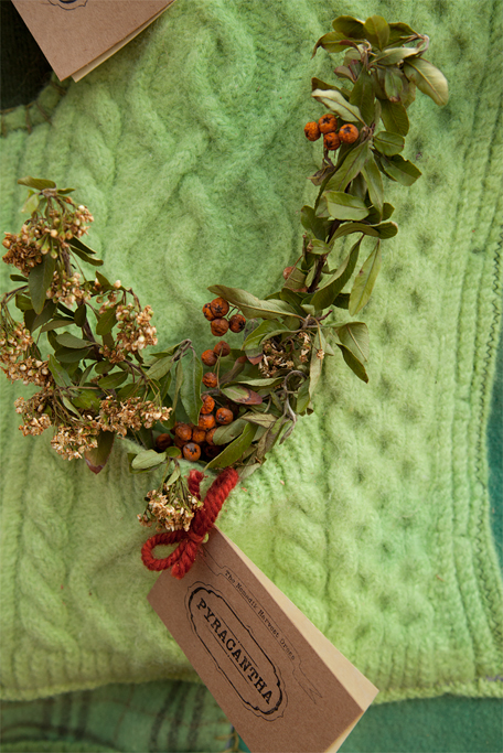 Original pockets from the sweaters are used to house the plants.