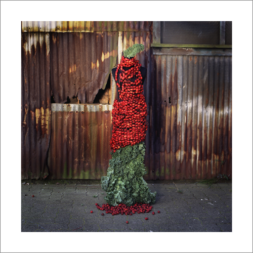 Crab Apple Gown