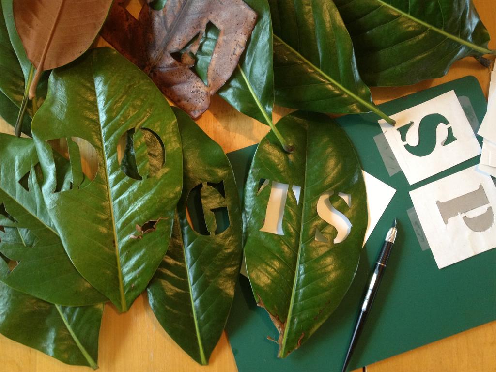 leaf-cut-outs-72